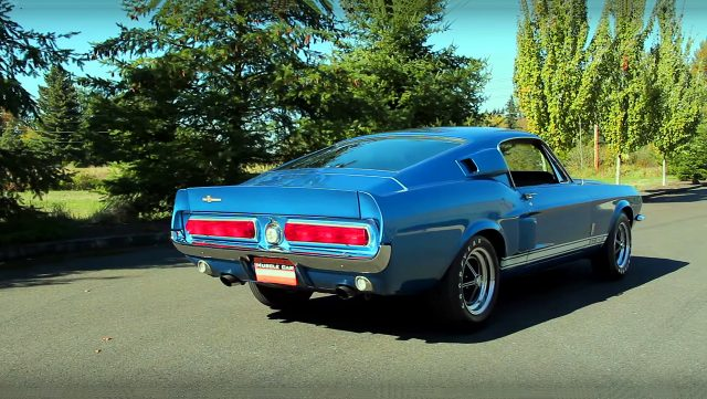 1967 Shelby Mustang GT500 back